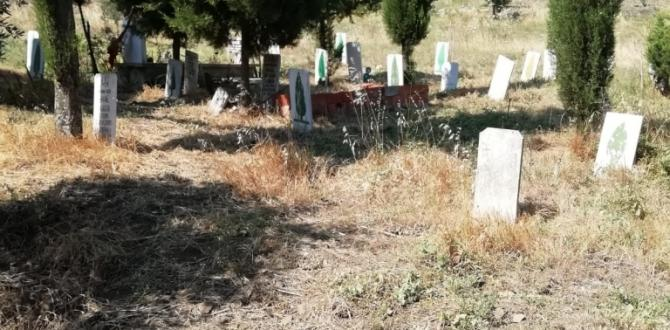 Soma Mezarlıklarında Yoğun Çalışma