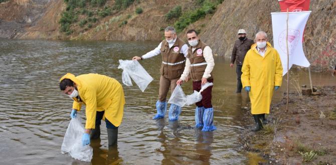 Soma'da 8 bin sazan balığı yavrusu suyla buluştu